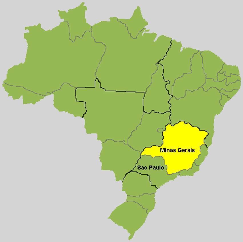 Brasilien Karte Minas Gerais Stockl Die Nr 1 Boa Constrictor